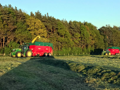 silage trailer working